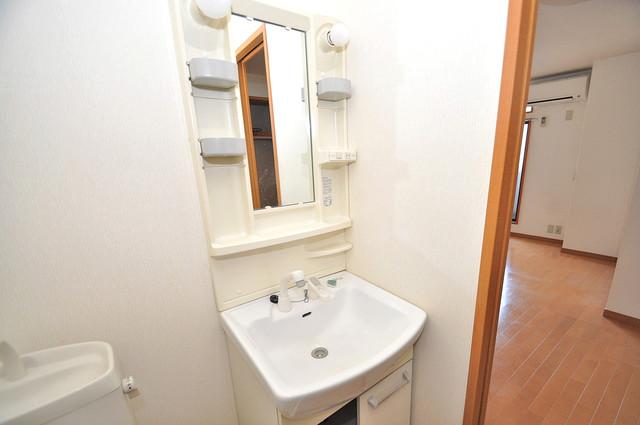 アドバンス俊徳 豪華な洗面台はもちろんシャンプードレッサー完備です。
