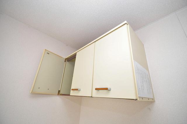 プレアール小若江 各所に収納があるので、お部屋がすっきり片付きますね。
