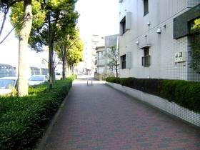 エントランス前の歩道