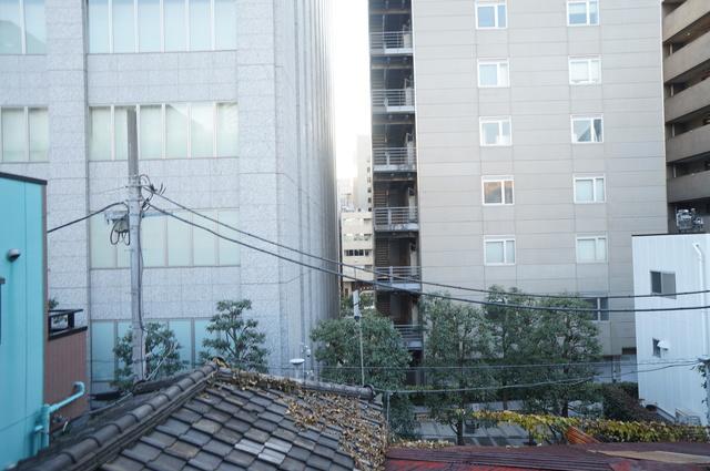 フォレストコート渋谷景色