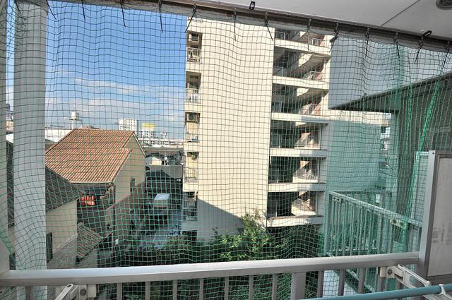 ツインコンフォートハイツ岩崎 この見晴らしが日当たりのイイお部屋を作ってます。