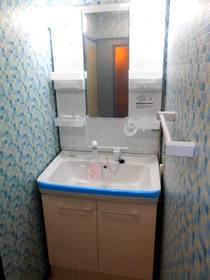 シャワー水栓の洗面化粧台